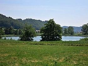 Bichelsee ZH.JPG