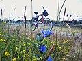 Bike Hetmanska Poznan.jpg