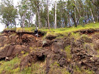 Binna Burra - Ancient lava flow - Binna Burra