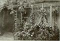 Bird notes (1908) (14748529485).jpg