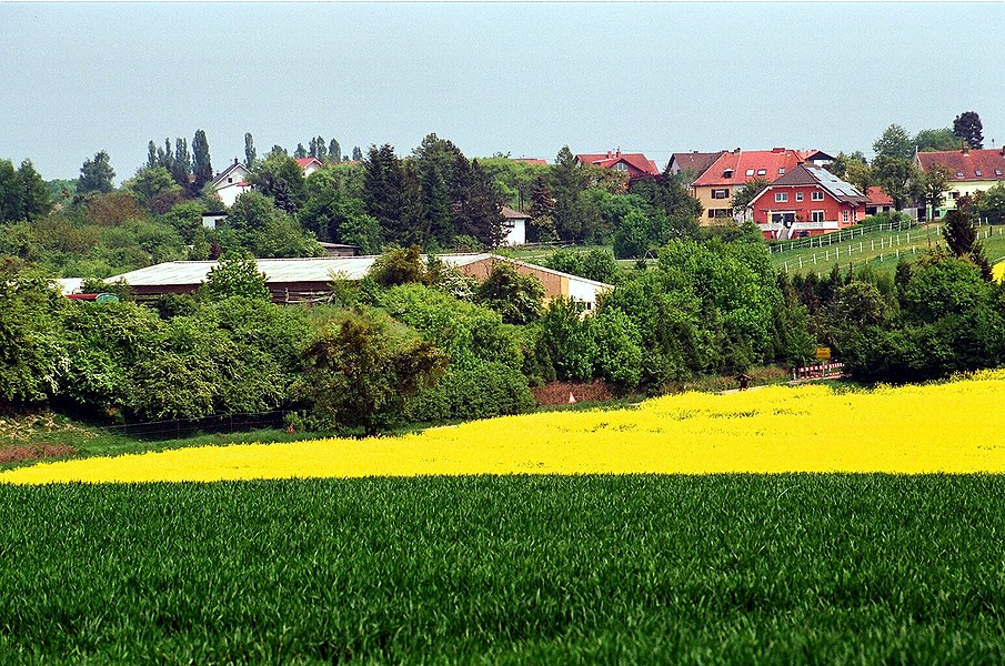 Biringen (Rehlingen-Siersburg), view to the village