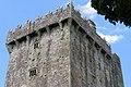 Blarney Castle, Blarney (506707) (28175059320).jpg