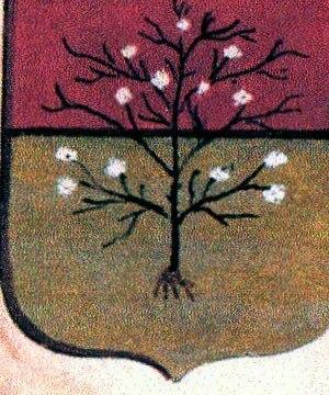 Malaspina family - Image: Blasone malaspina fosdinovo
