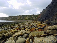 Blast Beach - geograph.org.uk - 1538494.jpg