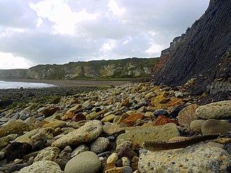 Dawdon - Image: Blast Beach geograph.org.uk 1538494