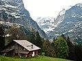 Blick in das Tal des Oberen Grindelwaldgletschers - panoramio.jpg
