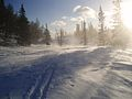 Blowing snow in Norway.jpg