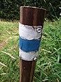 Blue trail from Lipno nV to Alpska Vyhlidka (2).jpg