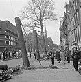 Bomen op de N Z Voorburgwal worden gekapt, Bestanddeelnr 915-2796.jpg