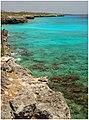 Bonaire 2031 (467411720).jpg