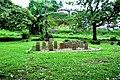 Botanic garden limbe119.jpg