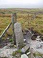 Boundary stone on Riggs Moor - geograph.org.uk - 239479.jpg