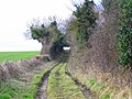 Bridleway, Martin Drove End - geograph.org.uk - 1175937.jpg