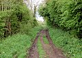 Bridleway by canal, Stockton (1) - geograph.org.uk - 1276886.jpg