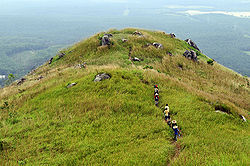 Broga Hill is a famous landmark in Broga.