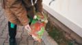 Broken-skateboard-Oly.png