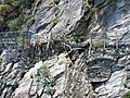 Broken path in Manarola to Corniglia (details).jpg