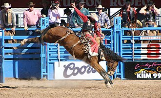 Bronc riding - Saddle Bronc riding