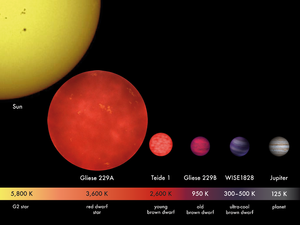 Jupiter mass - Estimated relative size of the planet Jupiter and the brown dwarfs WISE-1828, Gliese 229B, and Teide 1 compared to the Sun and a red dwarf star.