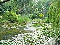 Bujakow ogród parafialny.JPG