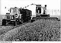 Bundesarchiv Bild 183-1983-0502-003, LPG Plate, Grünfutterernte.jpg