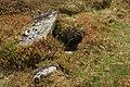 Burial chamber - geograph.org.uk - 1349606.jpg