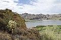 Butcher Jones Trail to Pinter's Point Loop, Tonto National Park, Saguaro Lake, Ft. McDowell, AZ - panoramio (99).jpg