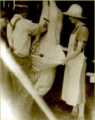 Butchering the swine, Saint-Urbain, Charlevoix county, in the 1930s.png