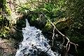 Butchers creek - omeo05.jpg
