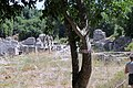 Butrint Albania - panoramio (1).jpg