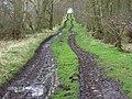 Byroad approaching Breaks Moss, Irthington - geograph.org.uk - 783076.jpg