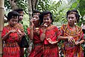 Young Toraja girls at a wedding ceremony