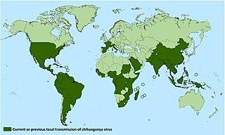 Epidemiology of chikungunya