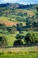 CSIRO ScienceImage 4374 Rolling hills near Bega NSW 2000.jpg