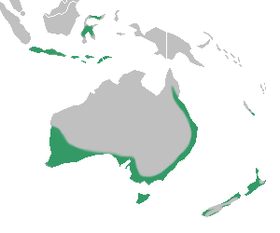 Caladenia distribution map.png