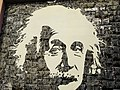 Camara de Lobos cans recycled to portraits - Einstein (37387004464).jpg