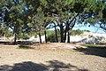 Camping en Complejo Centro Militar Salinas foto 6 - panoramio.jpg