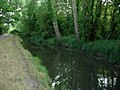 Canal cut - geograph.org.uk - 230630.jpg