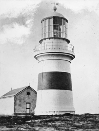 Cape Northumberland (South Australia) - Image: Cape Northumberland lighthouse State Library of South Australia PRG 280 1 40 198
