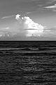 Caribbean Storm (4741047101).jpg