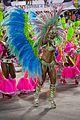 Carnaval 2014 - Rio de Janeiro (12973966663).jpg