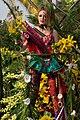 Carnaval de Nice - bataille de fleurs - 8.jpg