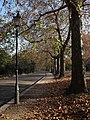 Carriage Drive South, Battersea Park - geograph.org.uk - 617247.jpg
