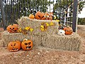Carved and Painted Pumpkins Placed On Hay Bales.jpg