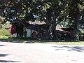 Casa del Rancho Los Alamitos.jpg