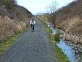 Castle Eden Walkway - geograph.org.uk - 150766.jpg