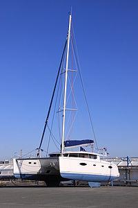 Catamaran modèle Salina 48 (1).JPG