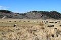 Cattle ranch in Powderhorn, Colorado.JPG