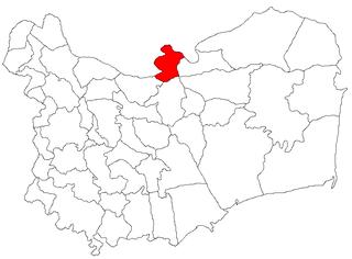Ceatalchioi Commune in Tulcea, Romania