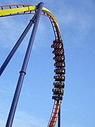 Cedar Point Mantis.jpg